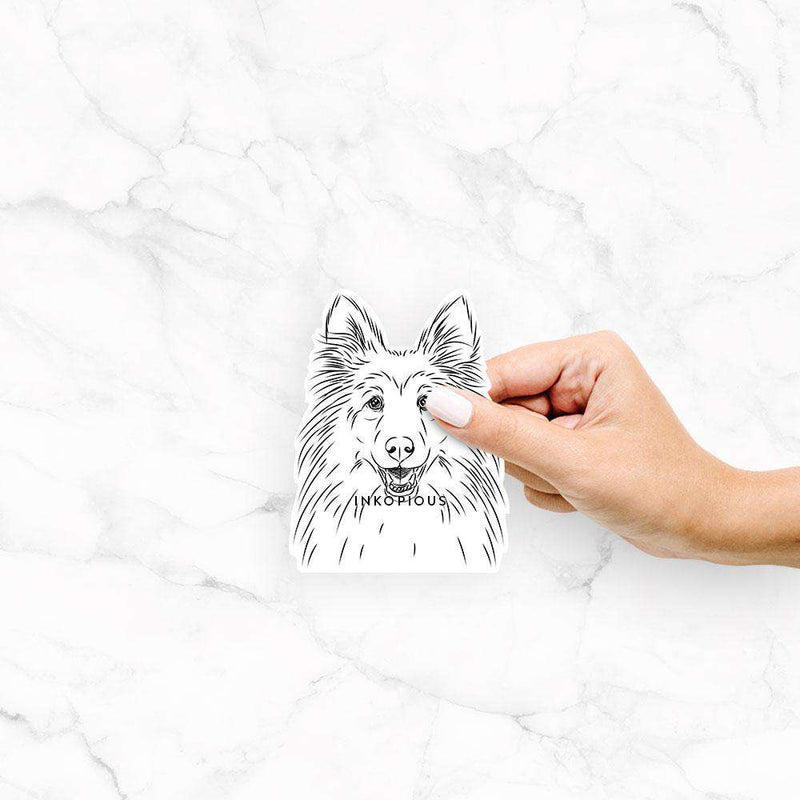 Sheldon the Shetland Sheepdog - Decal Sticker