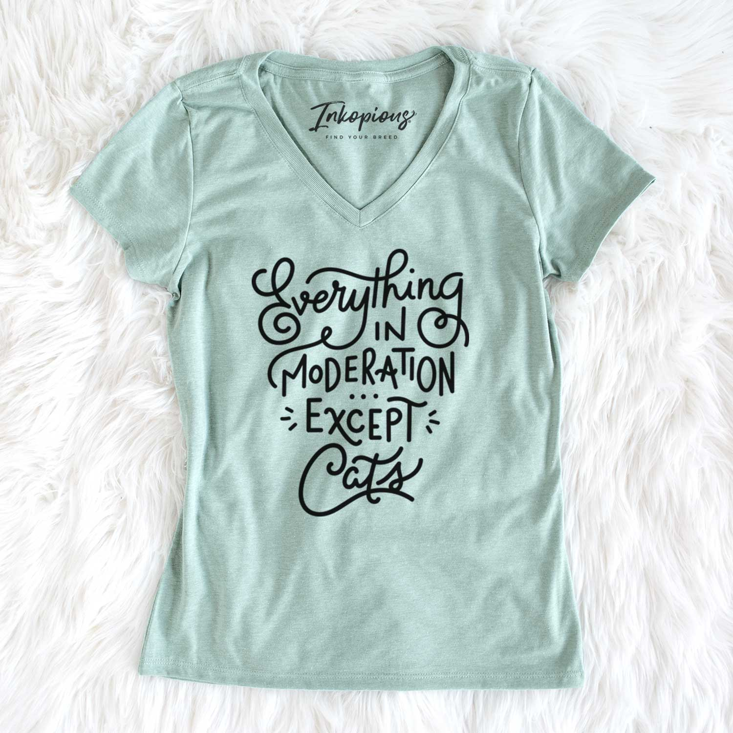 Everything in Moderation - Except Cats  - Women's Perfect V-neck Shirt