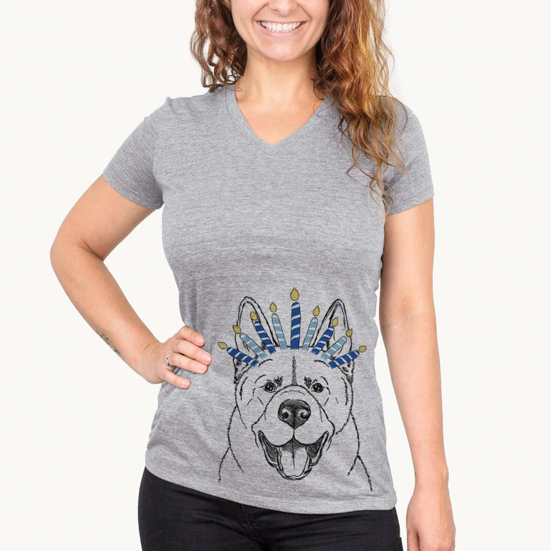 Baku the Akita  - Hanukkah Collection