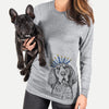 Huck the Bluetick Coonhound  - Hanukkah Collection