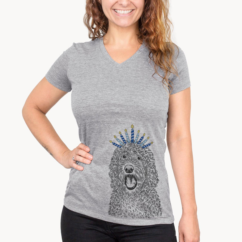 Phillip the Portuguese Water Dog  - Hanukkah Collection
