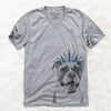 Tuckeroo the Boxer  - Hanukkah Collection