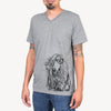 Sterling the Afghan Hound  - Medical Collection