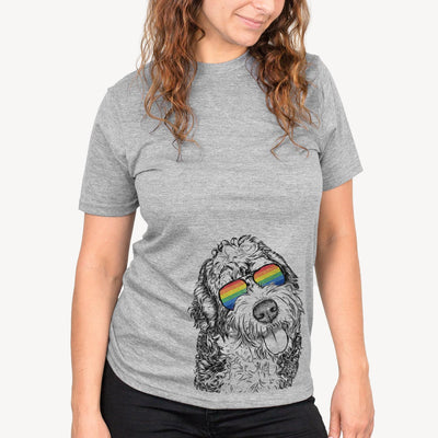 Kaci the Bernedoodle  - Rainbow Collection