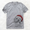 Barney the Cavachon  - Christmas Collection
