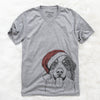 Blaze the Bernese Mountain Dog  - Christmas Collection