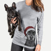 Drake the Doberman Pinscher  - Christmas Collection