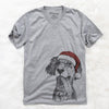 Renly the English Setter  - Christmas Collection