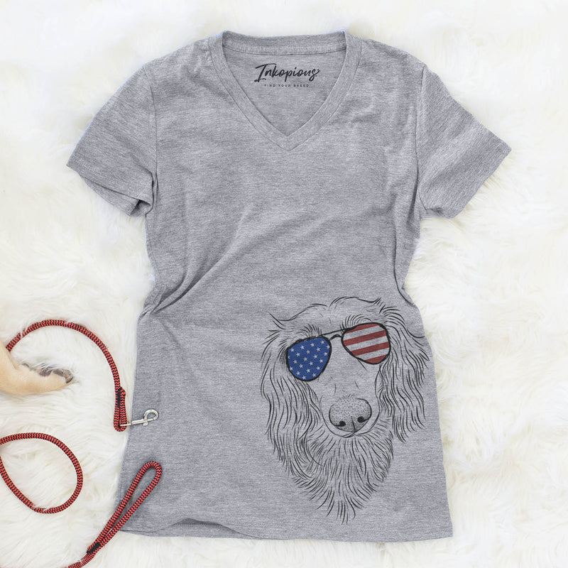 MrRusty the Long Haired Dachshund  - USA Patriotic Collection