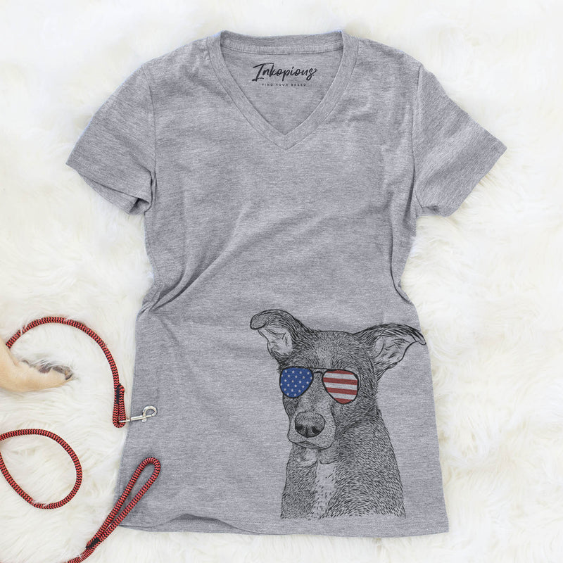 Wilbur the Shepherd Mix  - USA Patriotic Collection