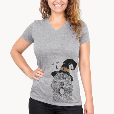 Lou the Otterhound  - Witch Collection