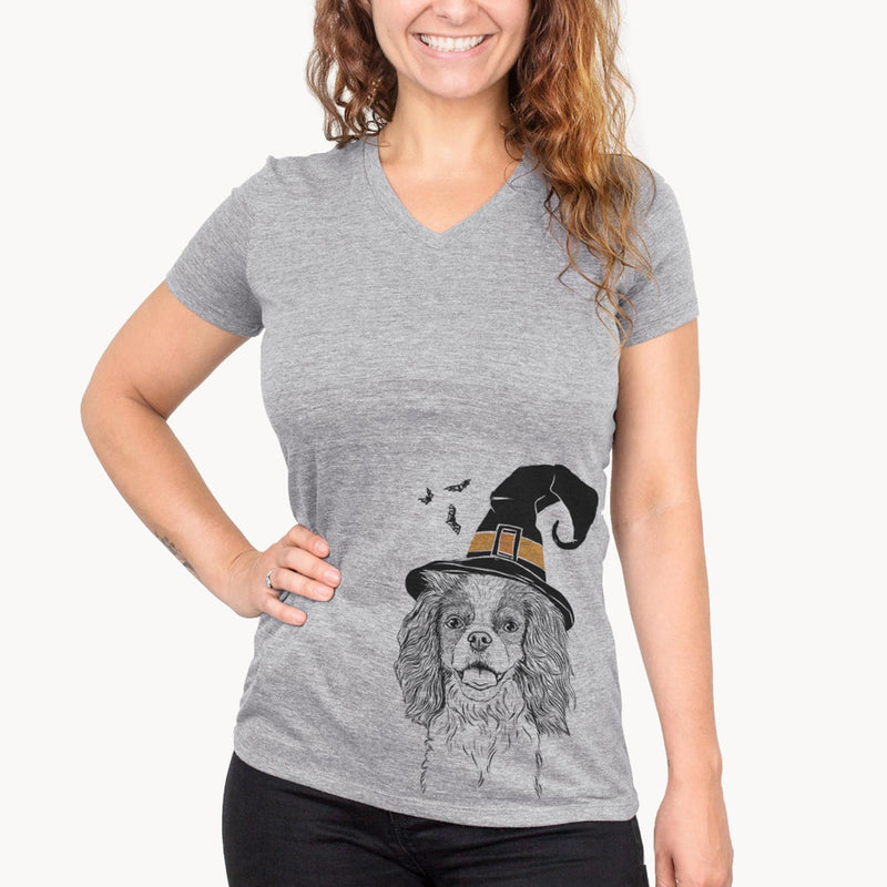 Poppy the Cavalier King Charles Spaniel  - Witch Collection