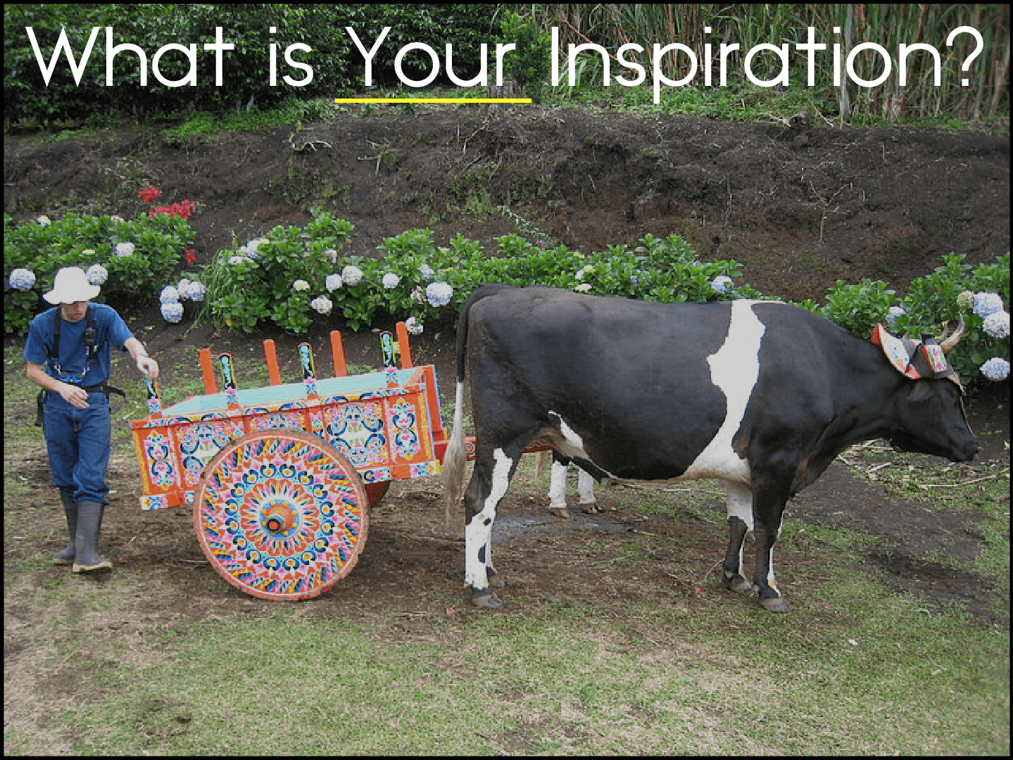 What is Your Inspiration?