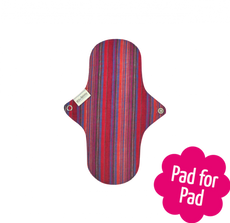 Reusable Menstrual Day Pad by Eco Femme