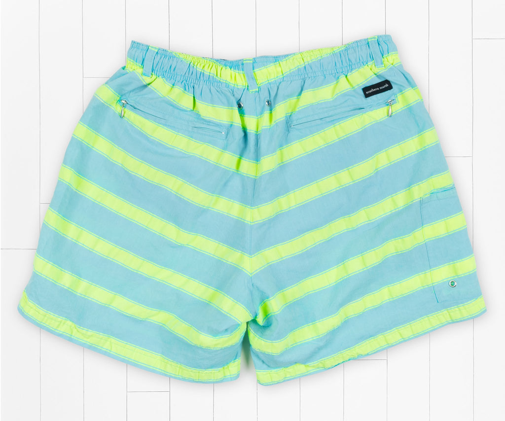 Antigua Blue Cruiser Stripe | Dockside Swim Trunk | Cruiser Stripe | Back