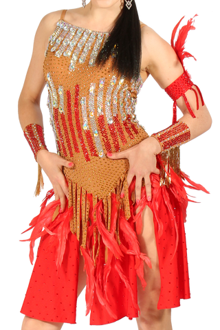 Red Featers Latin Competition Dress | SM Dance Fashion