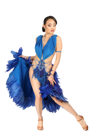 Blue Fringe Fearther Skirt/Tale Latin & Rhythm Competition Dress
