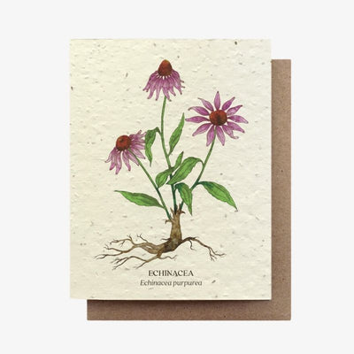 Echinacea Botanical Plantable Seed Card