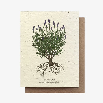 Lavender Botanical Plantable Seed Card