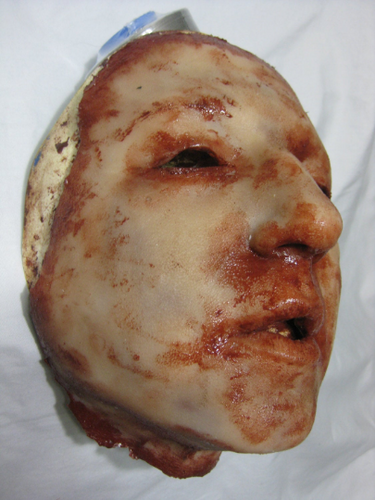 Elizabeth - Silicone Skinned Horror Face Mask