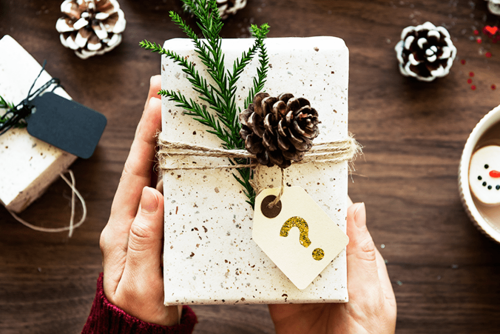 Holiday Mystery Gift Box