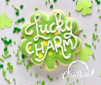 St. Patricks day Lucky Charm  - 1 piece