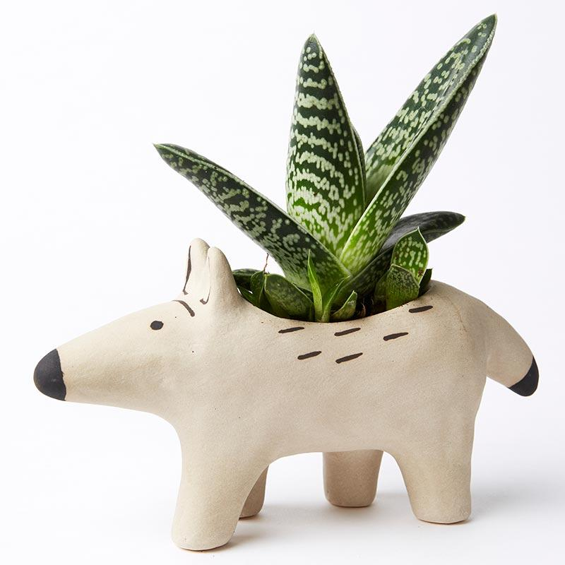 Jones & Co Sandy Dingo Planter