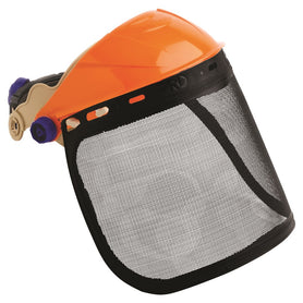 ProChoice Browguard With Visor Mesh