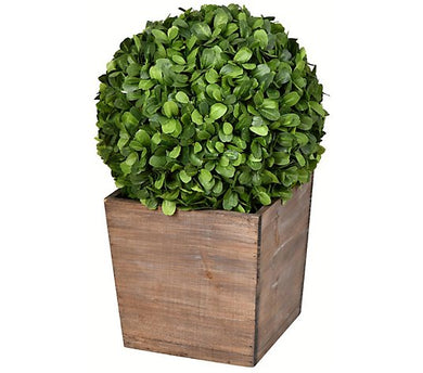 "Vickerman 16"" Artificial Potted Boxwood Ball"