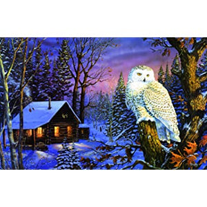 1000 pc Night Watch Owl Puzzle - Owl Aisle