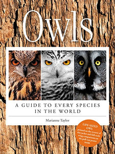 Owls: A Guide to Every Species in the World by Marianna Taylor - Owl Aisle