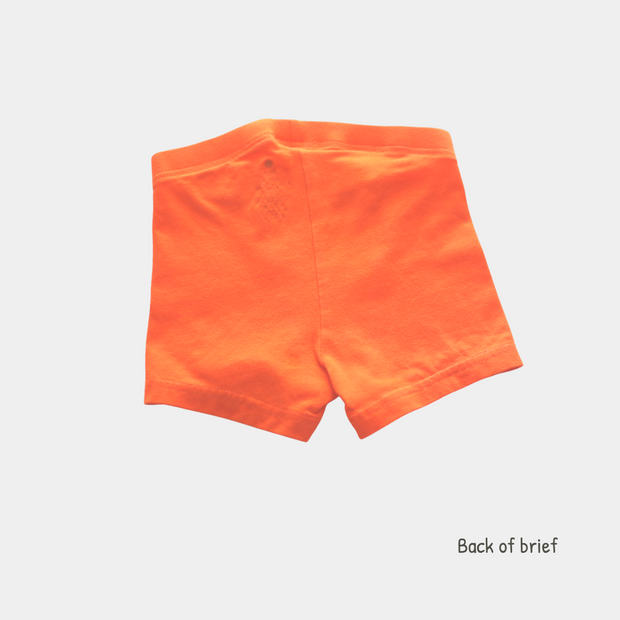 Organic Cotton Boys Boxer Briefs -  Funny Creatures - 2 Pairs