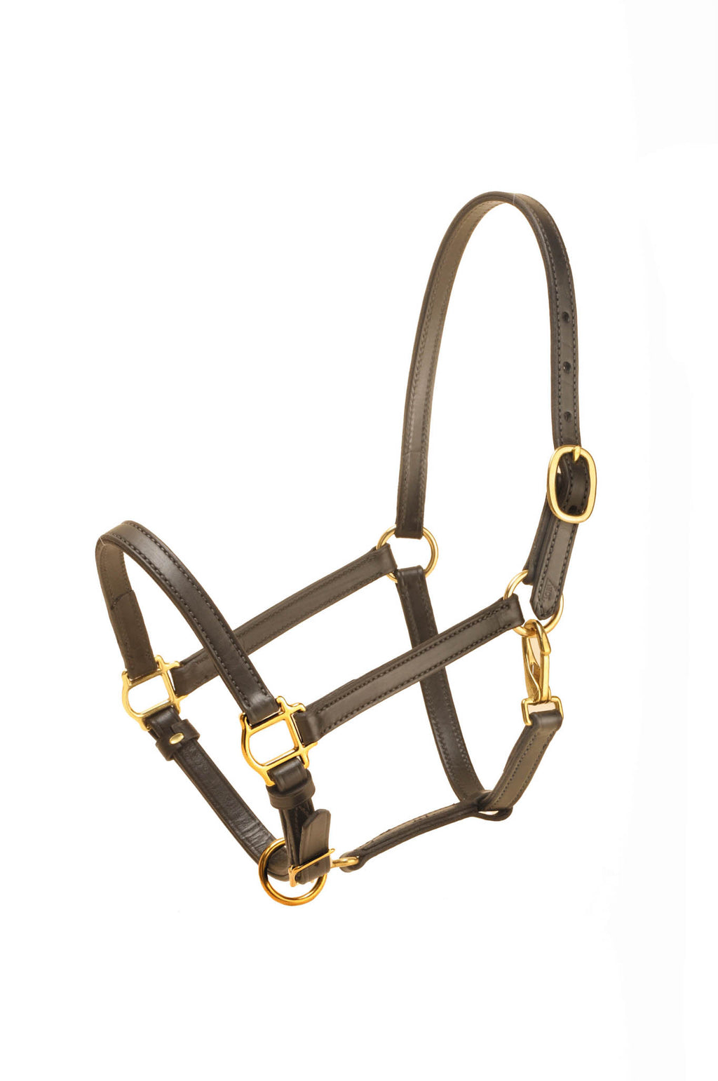 "Tory Leather 3/4"" Halter"