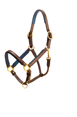 "Tory Leather 3/4"" Padded Leather Halter"