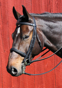 Vespucci Double Raised Weymouth Bridle