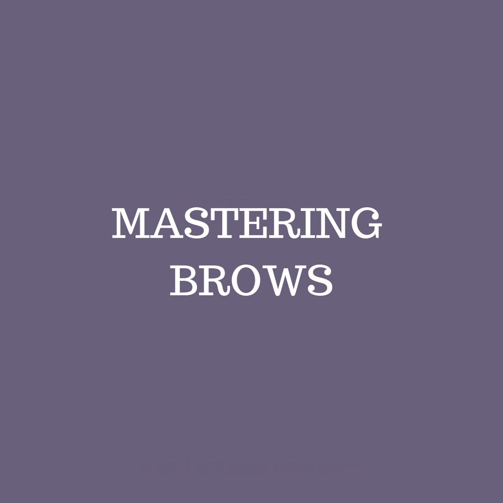 Mastering Brows Certification - January 11th