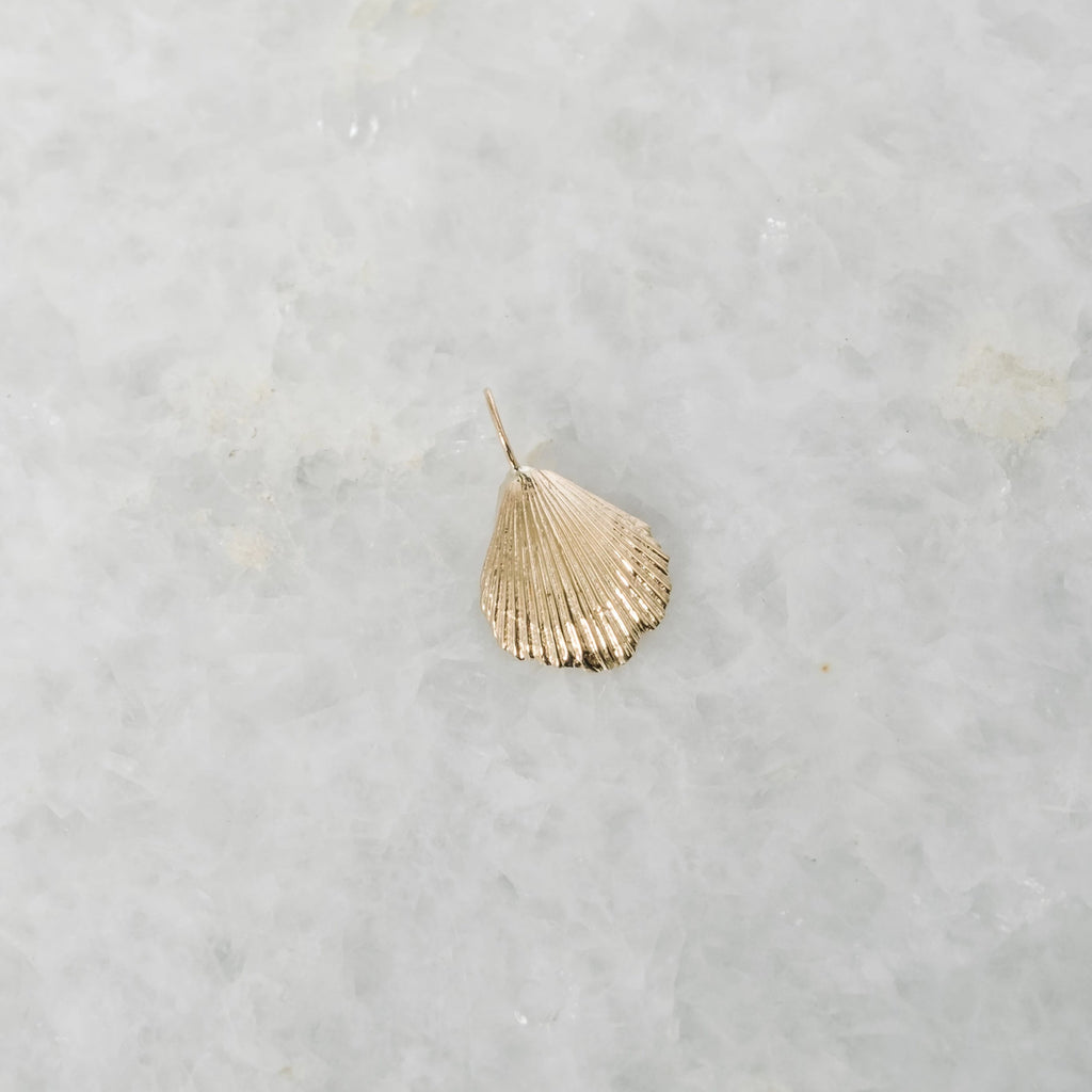 medium seashell charm