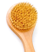 The ReKoop's Body Dry Brush - The ReKoop