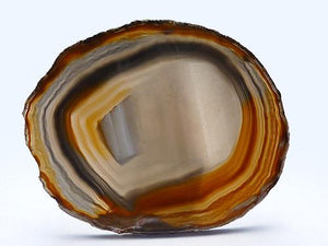 Agate Slice Large P - Natural