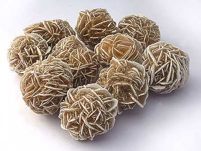 Desert Rose - Medium