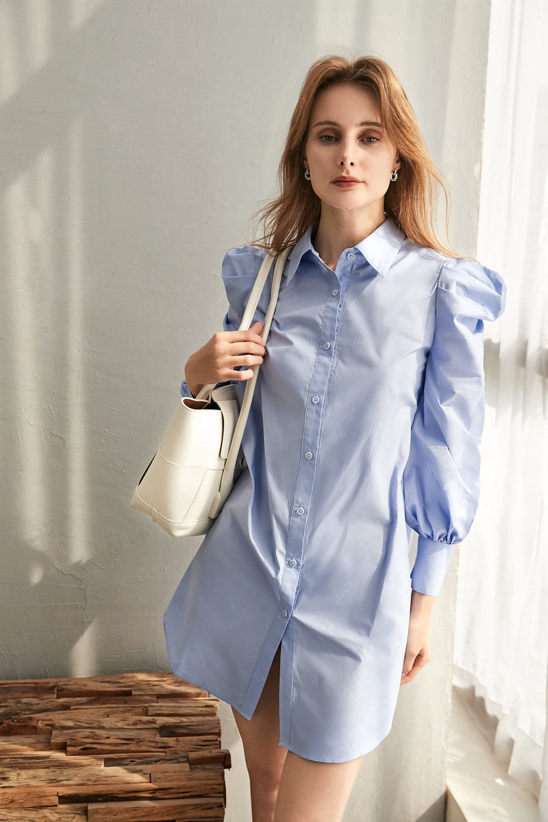 Wilma Blue Shirt Dress