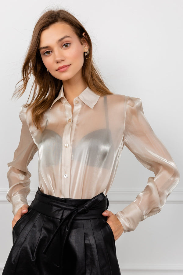 Satin Champagne Colored Long Sleeve Sheer Blouse | J.ING