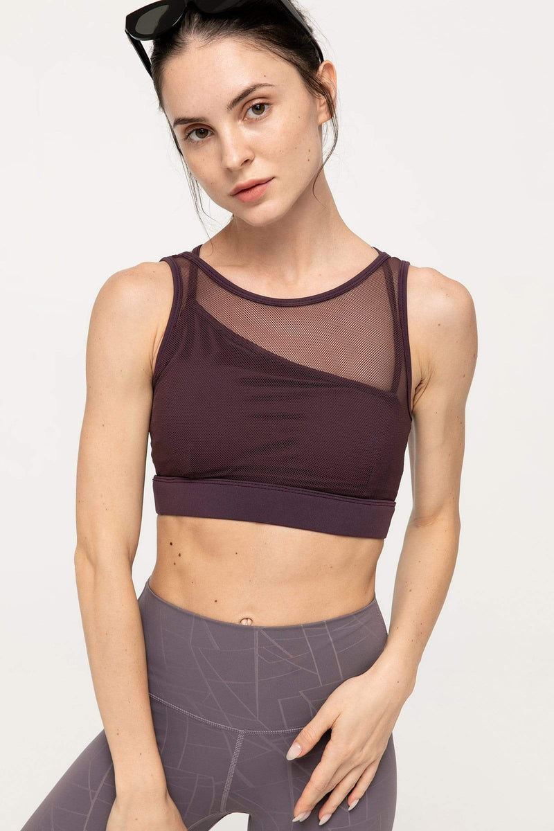 Purple Eggplant Mesh Bra Top