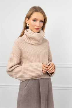 Donna Beige Knitted Turtleneck