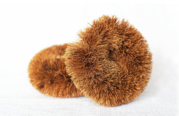 Coconut Scourer - Biodegradable