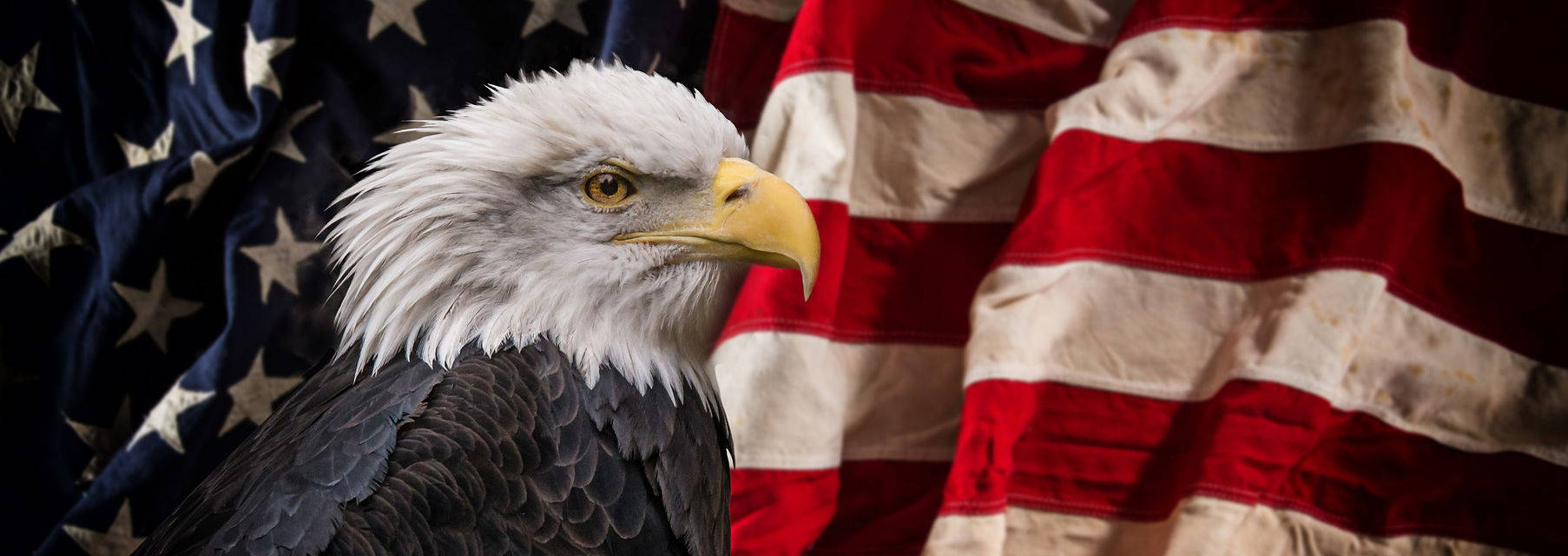 Ridiculously Patriotic Trivia About Eagles