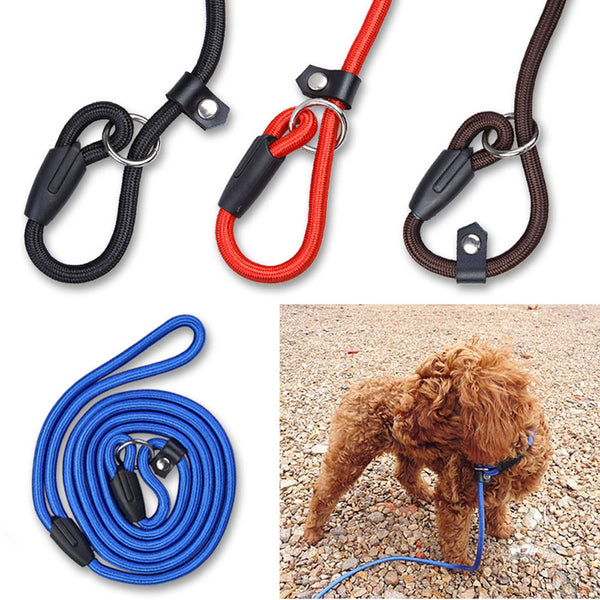 High Quality Adjustable Nylon Training Leash