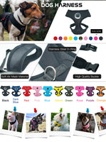 Paw LOVE Rubber Adjustable Soft Breathable Dog Harness