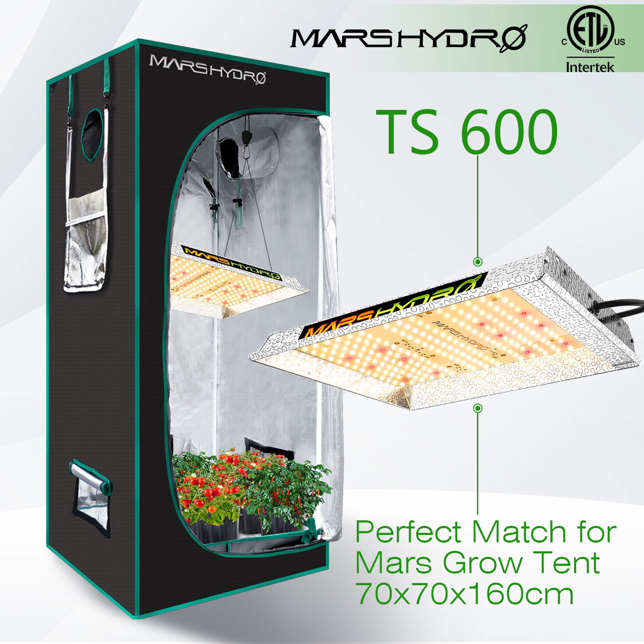 MARS HYDRO TS600 Grow Light