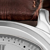 Swatch: Stainless Steel(not available) (selected)